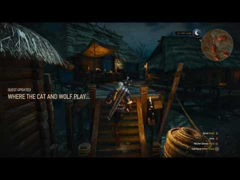Witcher 3 - Wie eskortiere ich eine kleine Hoe?