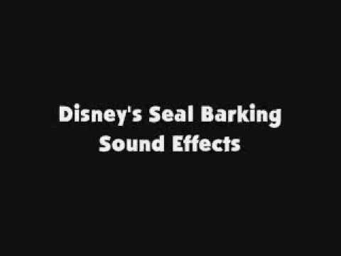 Marine Animal Sounds