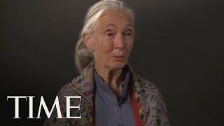 TIME Magazine Interviews: Dr. Jane Goodall thumbnail