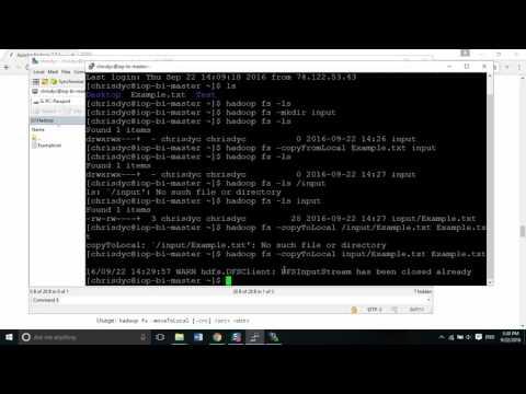 Hadoop DFS Command Line (mkdir, rm, copyFromLocal, copyToLocal)