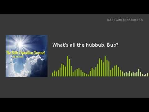 What's All The Hubbub, Bub?
