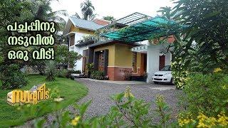 Devadheyam- A home nestled in harmony with Nature | Swapnaveedu