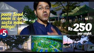 Mr Kejriwal, can you do this in Delhi? (Korean Camps near river Yamuna)