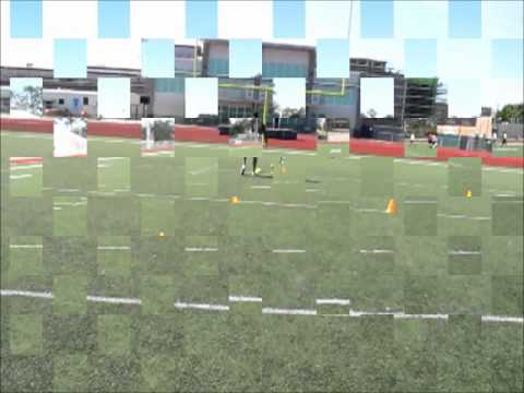 Blitz Football Camp Defensive Back Cone Drills Movie.wmv
