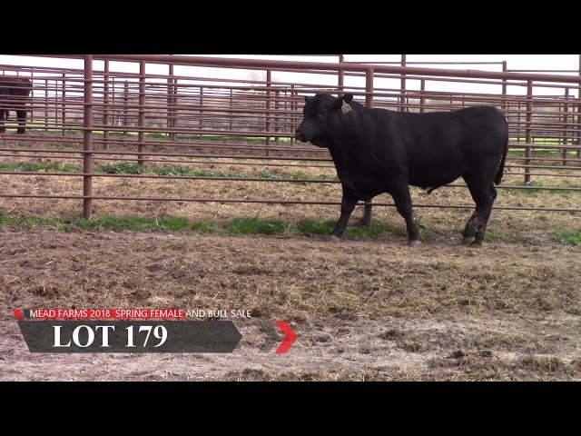 Mead Farms Lot 179