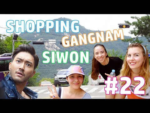 VLOG 22: ON TOUCHE LA MAIN DE SIWON, SHOPPING À GANGNAM & L'AFFAIRE DE LA GLACE - SEOUL | HD VFT