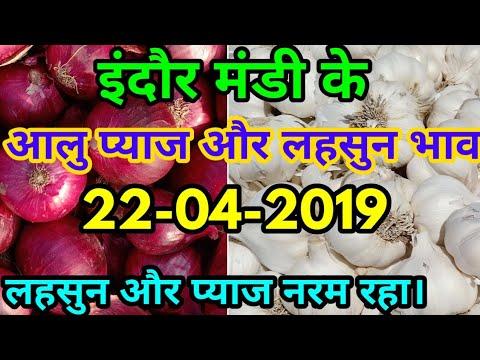 Indore Mandi Garlic And Onian Price Report 22-04-2019| इंदौर मंडी के लहसुन और प्याज के भाव 22-04-19