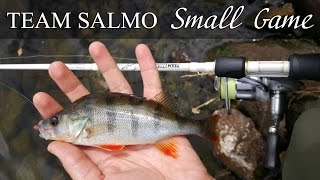 Спиннинг Team Salmo Tioga Small Game - обзор