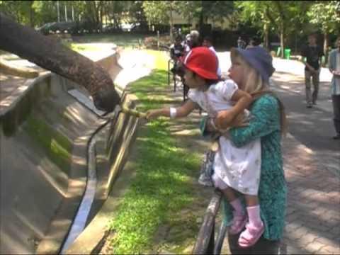 Zoo Negara-Dahulu Sekarang