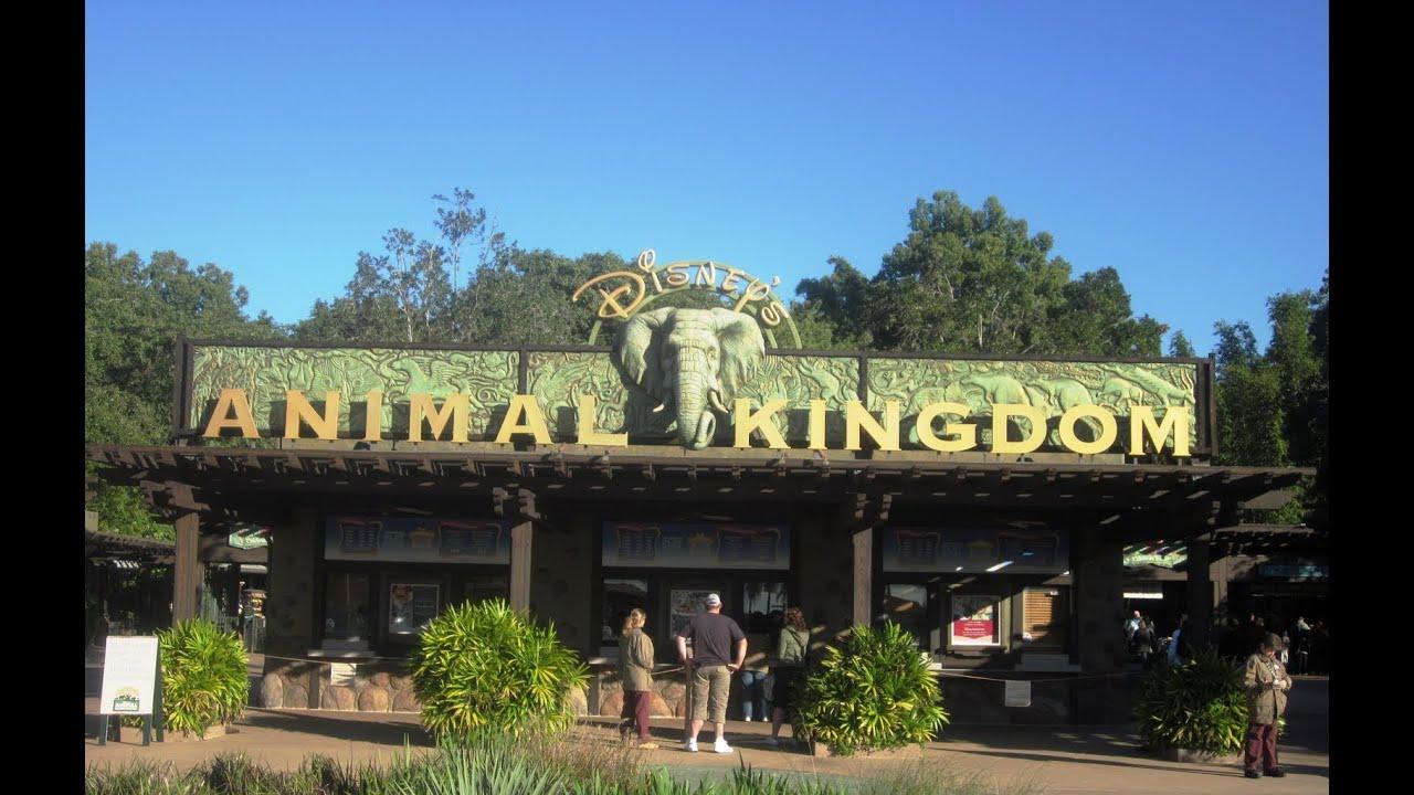 Animal Planet Hotel Orlando Florida