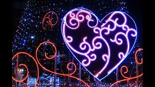 💖今週の恋愛オラクルカードリーディング💖11月19日~11月25日Weekly Love Card Reading thumbnail