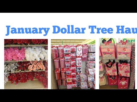 January Dollar Tree Haul