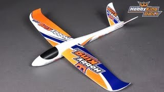 Hobbyking Daily - Hand Launch Glider