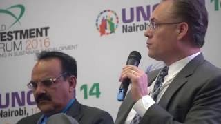 Dr. Tomas Hult discusses the role of non-traditional investors in financing the SDGs