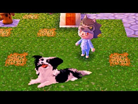 Dream Diary Animal Crossing New Leaf Counting Sheep Youtube