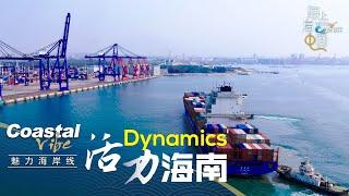 Coastal vibe: Dynamics