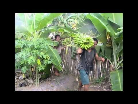 limot na bayani Gising na kaibigan hangin himig ng pag-ibig itanong mo sa mga bata  lupa magnanakaw masdan mo ang kapaligiran mga limot na bayani pag-asa pagbabalik panibagong .