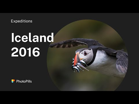PhotoPillers in Iceland 2016