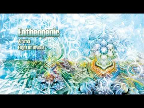 Entheogenic - Araras [ Psychill ]