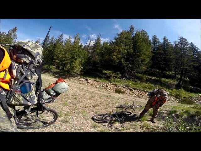 Montana Black Bear Hunt Spring 2016
