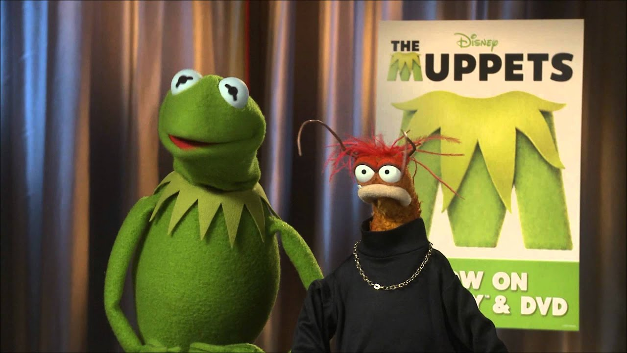 maxresdefault interview with kermit & pepe the king prawn youtube
