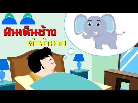ฝันเห็นช้าง (จะโชคดีหรือโชคร้ายยังไงบ้างนะ) | เพลงเด็ก การ์ตูนเด็ก Indysong Kids
