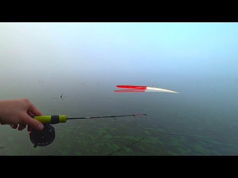 ОНО ПОЛОЖИЛО ПОПЛАВОК ПОД НОГАМИ...КАРП или КАРАСЬ?! Рыбалка 2020