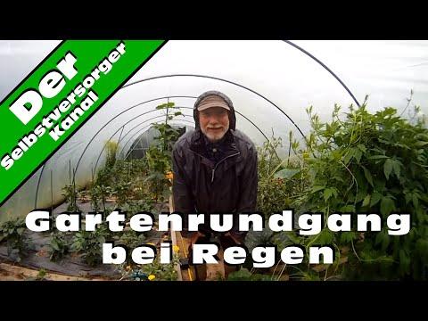 Gartenrundgang bei Regen