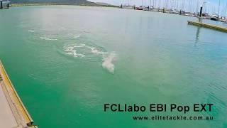 Elite Tackle presents the FCL Labo EBI Pop EXT