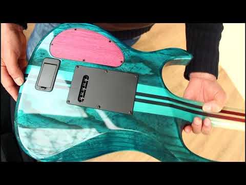 Kiesel DC600 Guitar Unboxing - Most Incredible Birdseye Maple Fingerboard!
