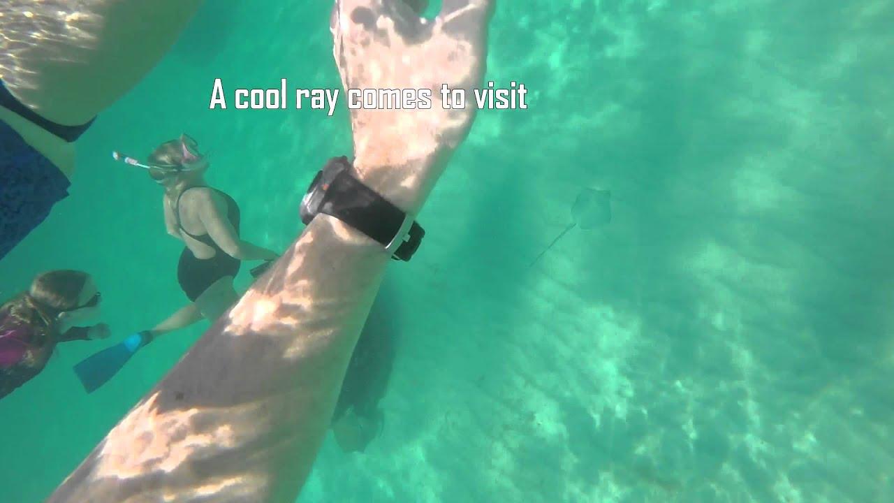 Navarre Beach Snorkel