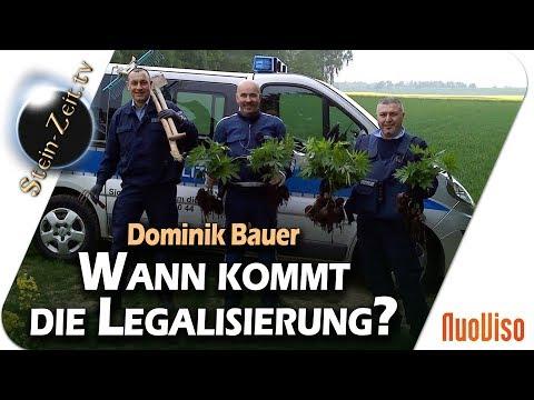 Wann kommt die Legalisierung? - Dominik Bauer im Gespräch mit Robert Stein
