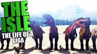 The Isle - THE LIFE AND DEATH OF A GIGANOTOSAURUS, GIGA PACK HUNTING SHANTS - The Isle Gameplay