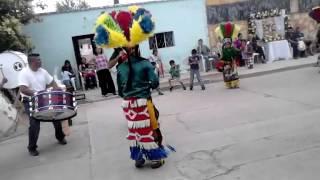Danza san jose cosio Aguascalientes