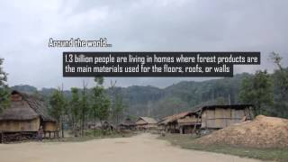 Our Forest, Our Sustainable Future!