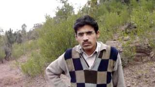 Kamyab Pakistan Site of Goat Farm
