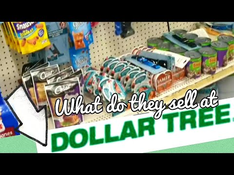 What Does Dollar Tree Sell?#dollartree #ricardosfamilyvlogs