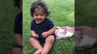 Funniest babies with animals adorable #compilation7