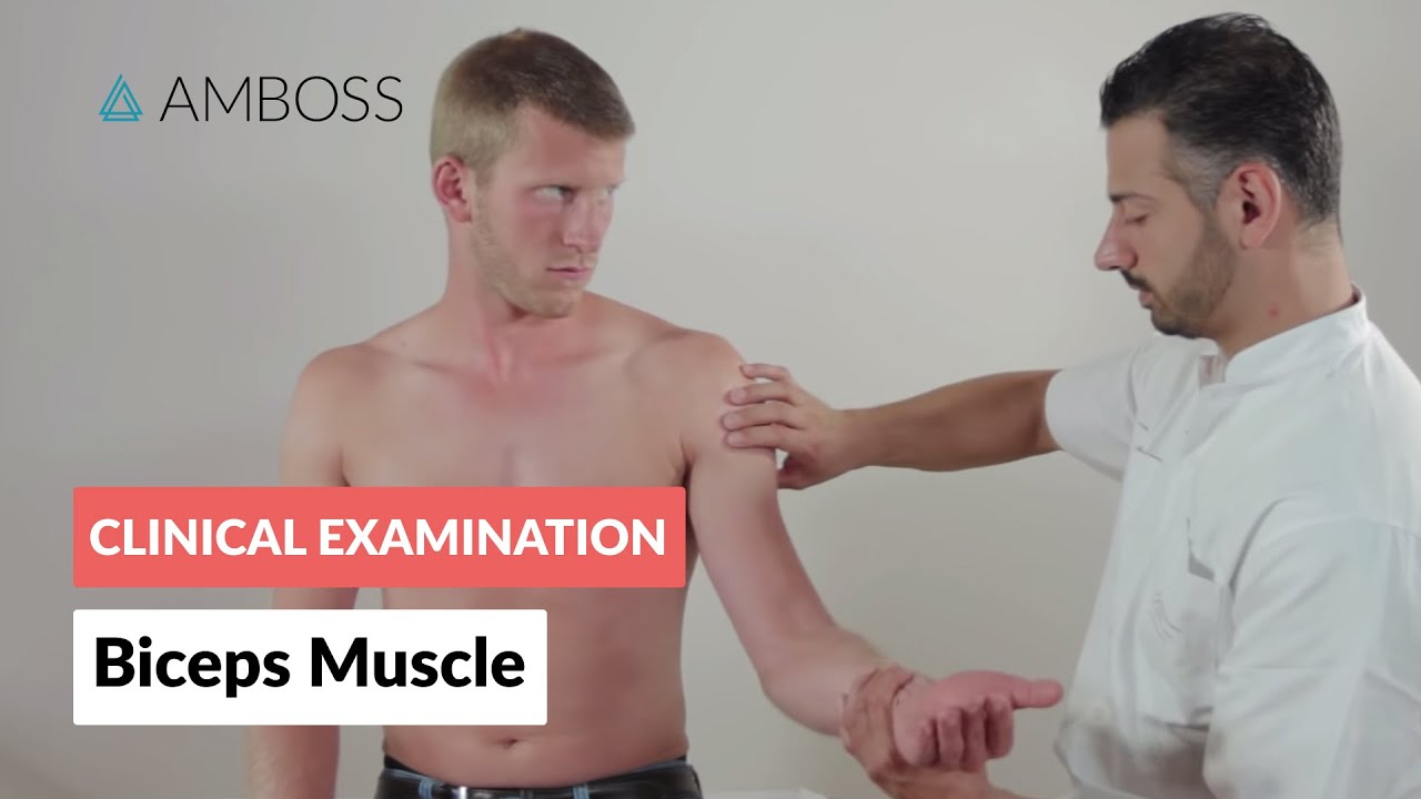 Inspection And Palpation Of The Biceps Muscle Clinical Examination