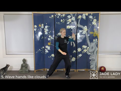 10-Form Yang Tai Chi and Some Self-Critiquing