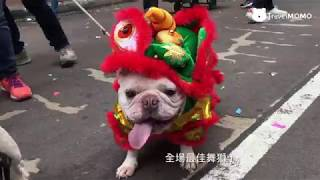 Publication Date: 2018-03-25 | Video Title: 鴨脷洲洪聖誕 Hung Shing Festival in