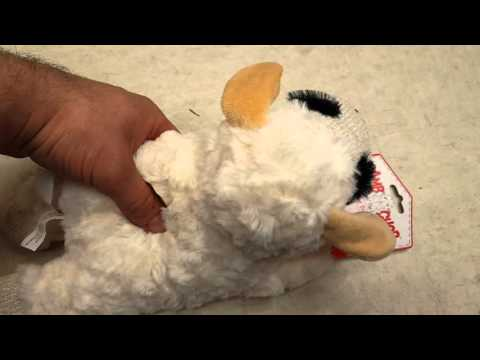 squeaky-dog-toy-lamb-ep6