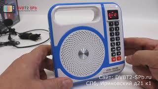 LoadSpeaker WS-1505 - обзор радиоприёмника с USB, SD и микрофоном