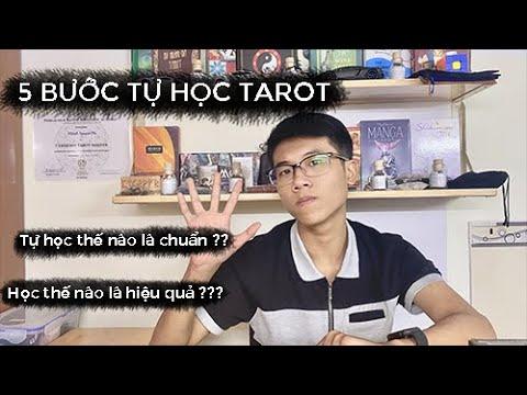 5 bước bắt đầu tự học Tarot