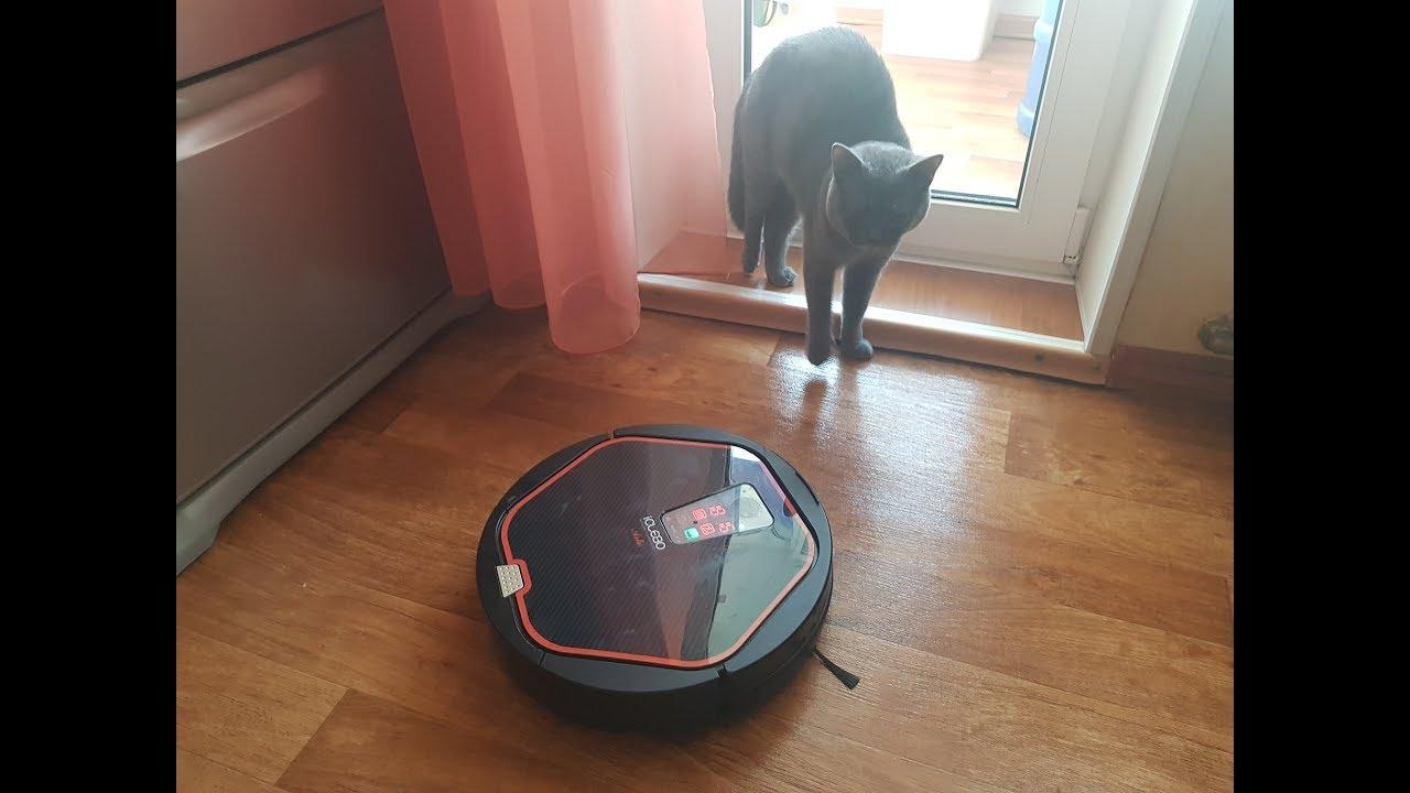 Говорящий робот пылесос Володя  Ругается на кота  2 сезон 10 серия
