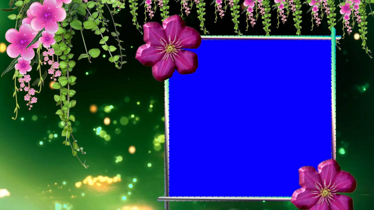Blue Background Animated Wedding Frame Video Free Youtube