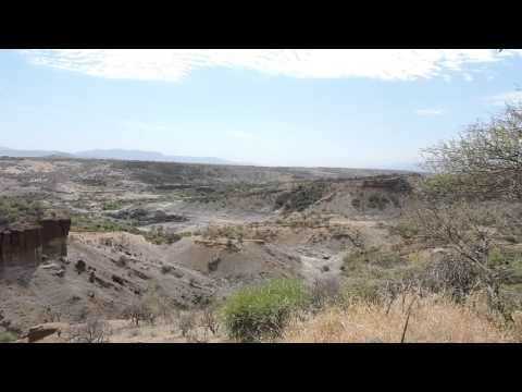#Olduvai Gorge: The Cradle of Humanity