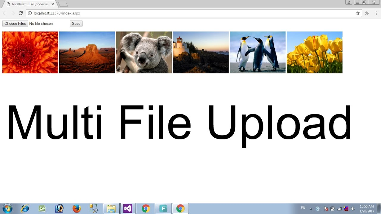 multiple file upload,view,delete in asp net