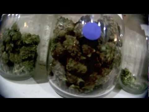 Kid Ink - Ms. Jane [Official Smoke Video]
