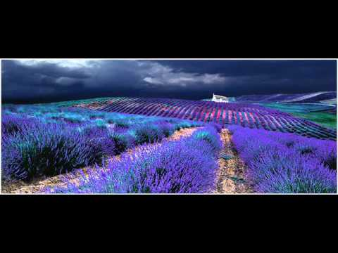 Soulstance - Blue Grassland